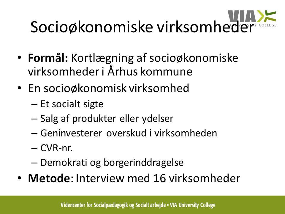 Socioøkonomiske virksomheder