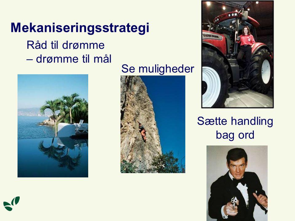 Mekaniseringsstrategi