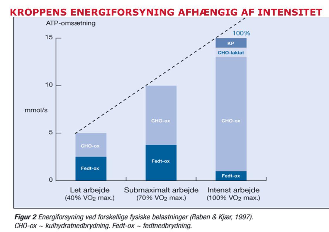 KROPPENS ENERGIFORSYNING AFHÆNGIG AF INTENSITET