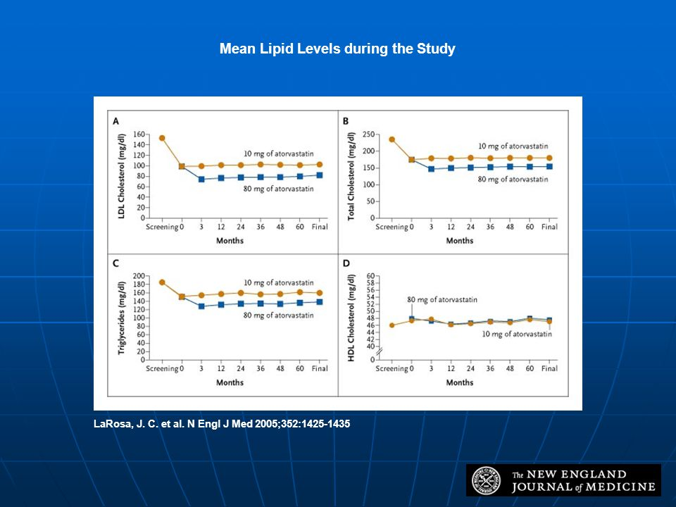 Mean Lipid Levels during the Study