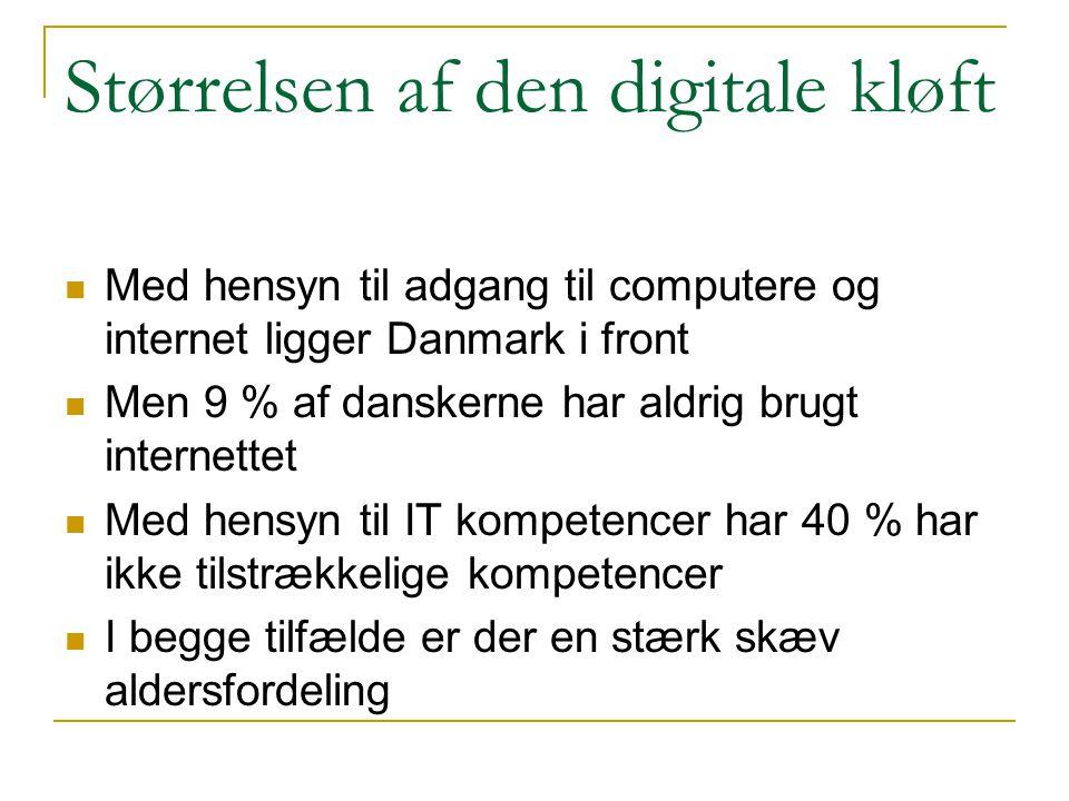 Størrelsen af den digitale kløft