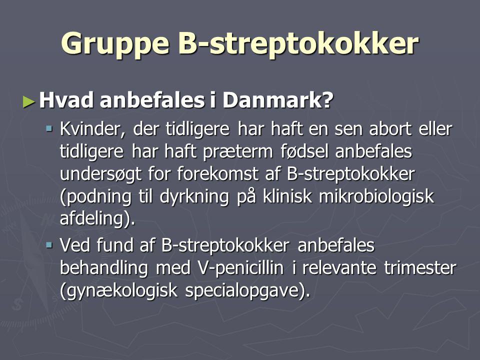 Gruppe B-streptokokker