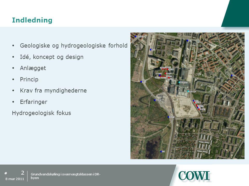 Indledning Geologiske og hydrogeologiske forhold
