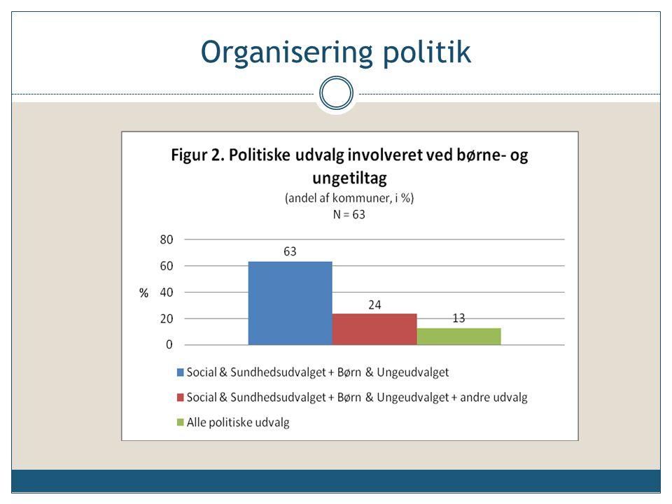 Organisering politik