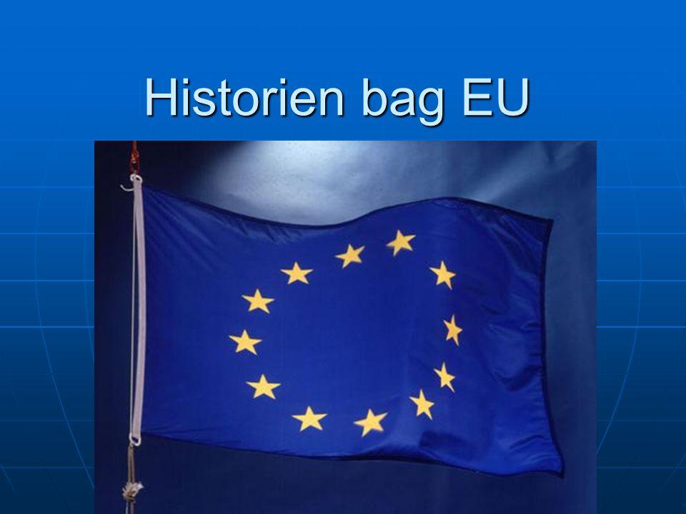 Historien bag EU Vi har om EUs historie. Så vi vil gerne fortælle og vise jer noget om Maastricht-traktaten.