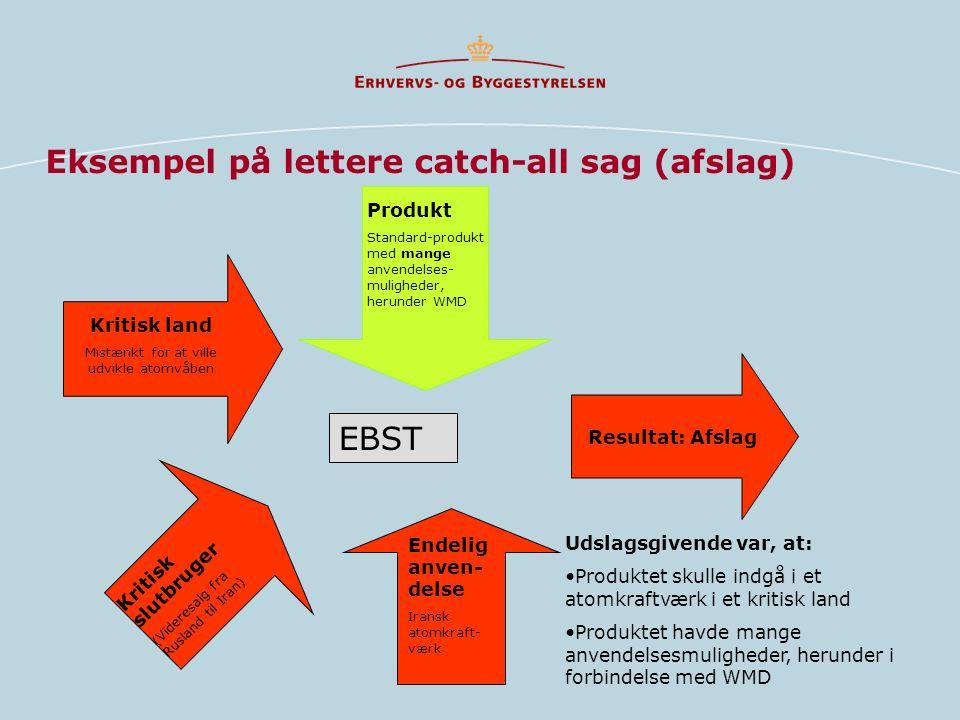 Eksempel på lettere catch-all sag (afslag)