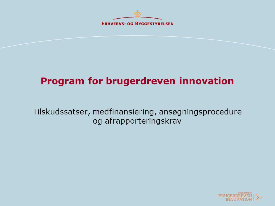 Program for brugerdreven innovation