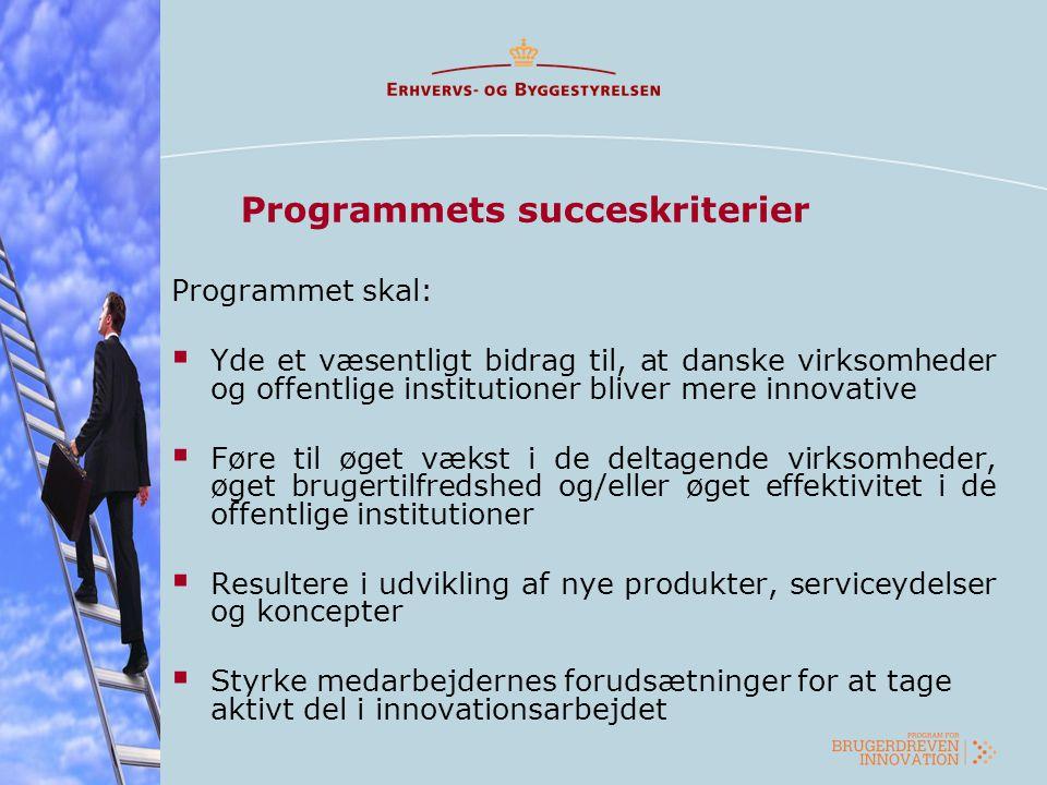 Programmets succeskriterier