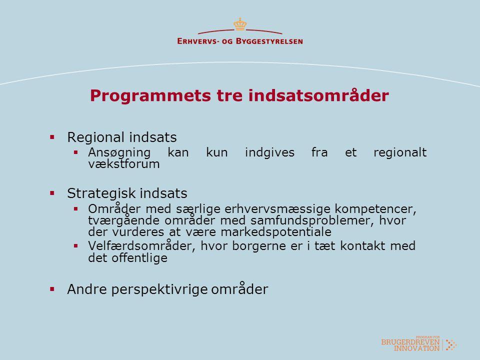 Programmets tre indsatsområder