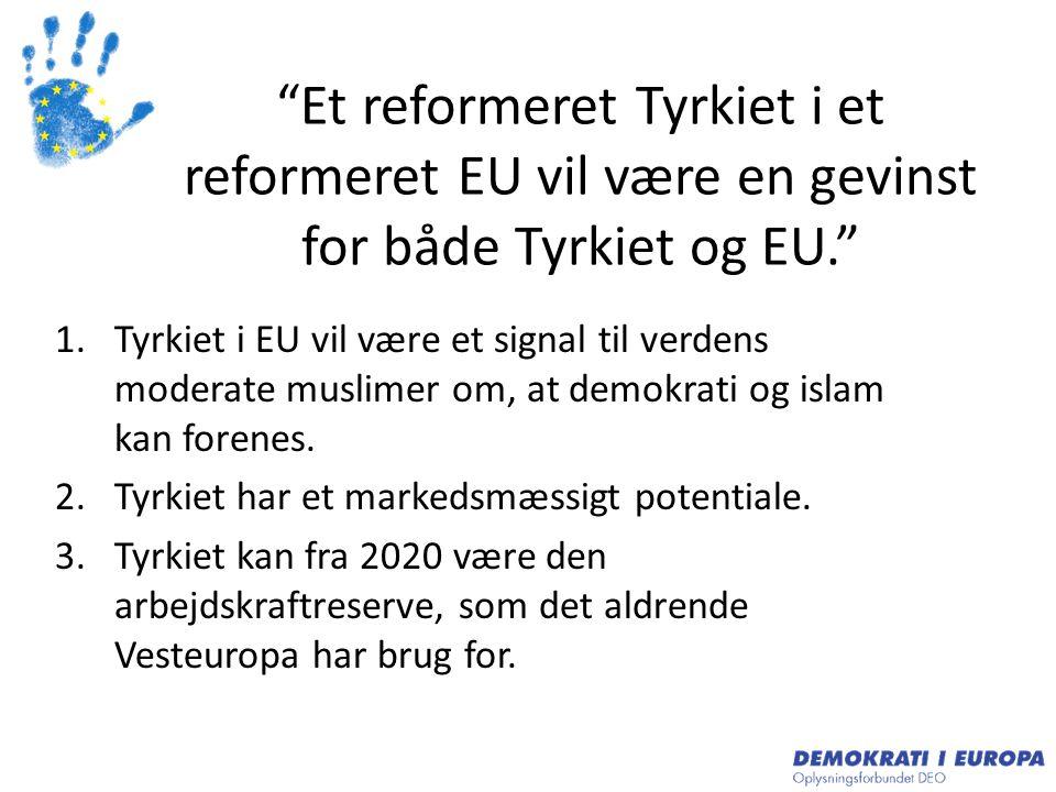 Et reformeret Tyrkiet i et reformeret EU vil være en gevinst for både Tyrkiet og EU.
