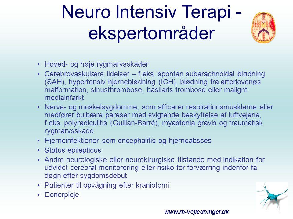 Neuro Intensiv Terapi - ekspertområder