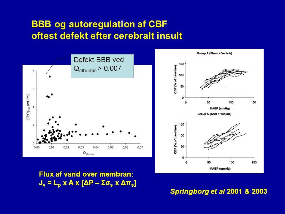 BBB og autoregulation af CBF oftest defekt efter cerebralt insult