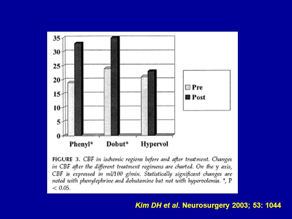 Kim DH et al. Neurosurgery 2003; 53: 1044
