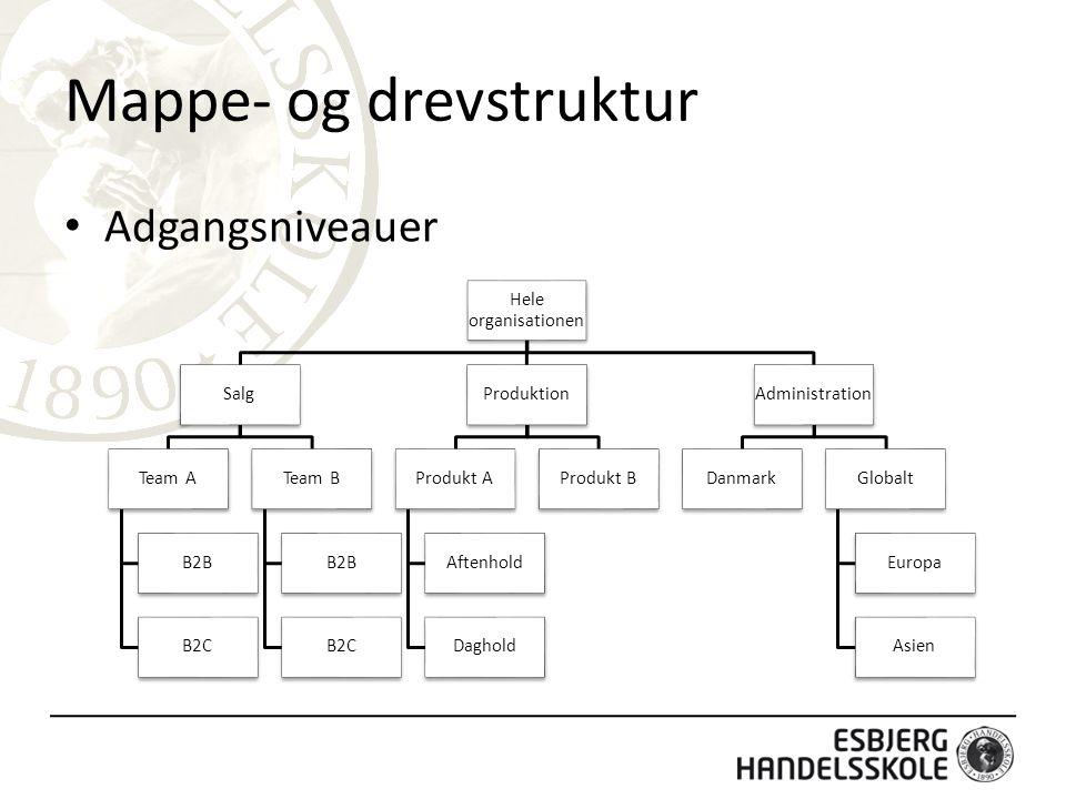 Mappe- og drevstruktur