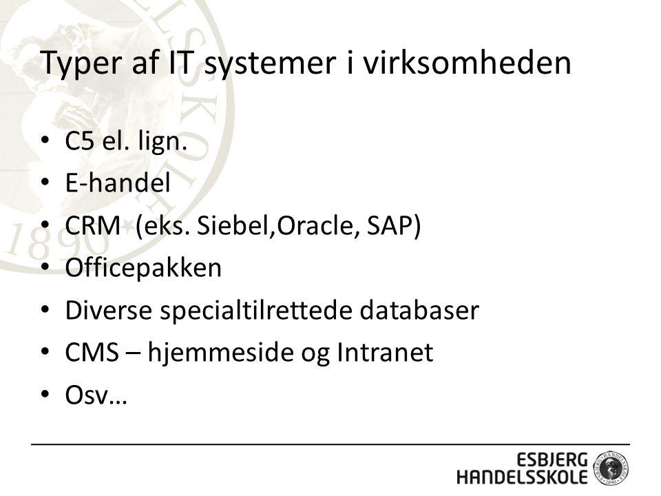 Typer af IT systemer i virksomheden
