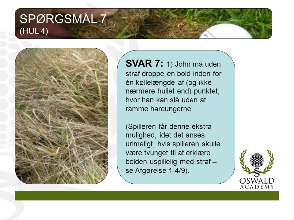 SPØRGSMÅL 7 (HUL 4)