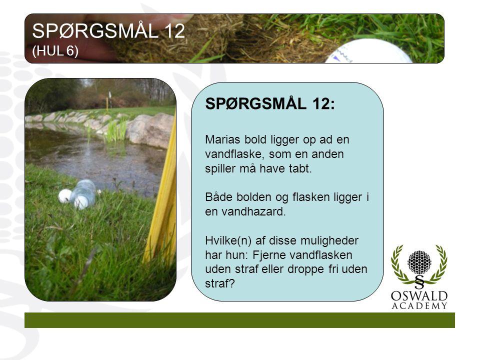 SPØRGSMÅL 12 SPØRGSMÅL 12: (HUL 6)