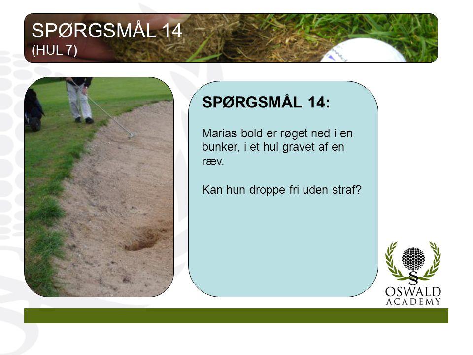 SPØRGSMÅL 14 SPØRGSMÅL 14: (HUL 7)