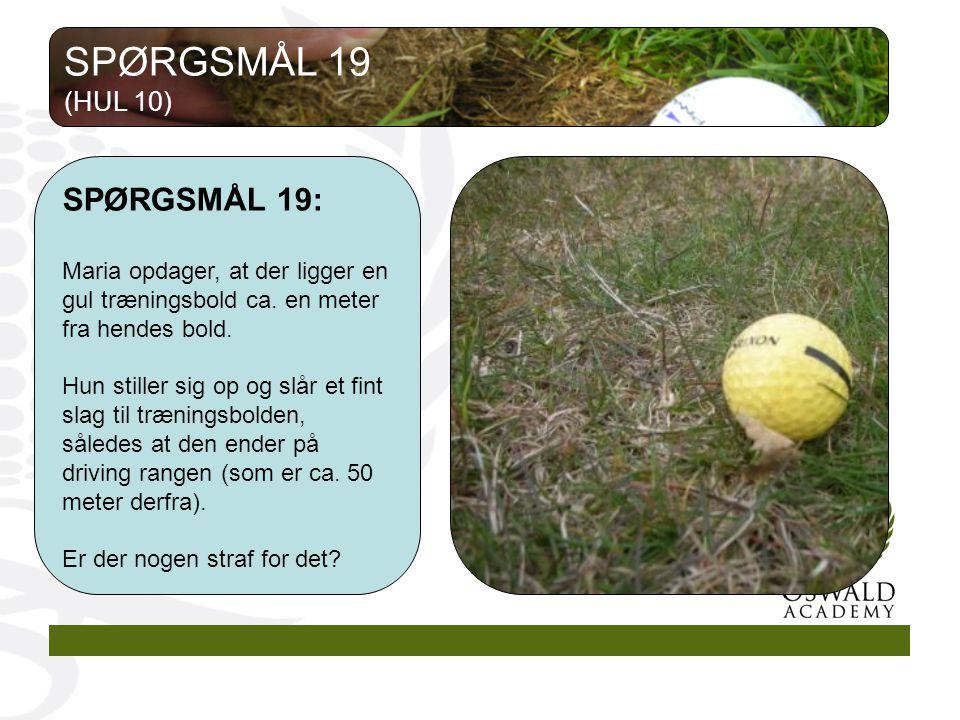 SPØRGSMÅL 19 SPØRGSMÅL 19: (HUL 10)