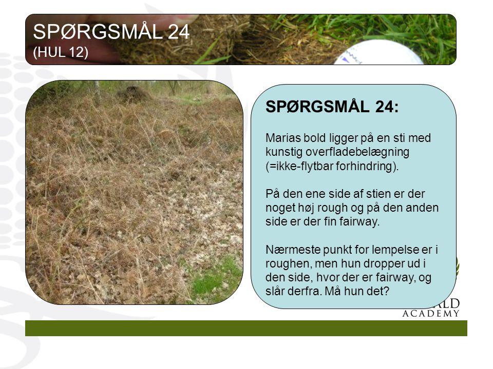 SPØRGSMÅL 24 SPØRGSMÅL 24: (HUL 12)