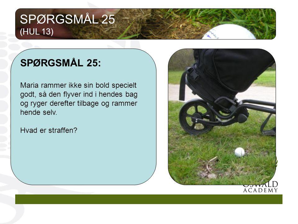 SPØRGSMÅL 25 SPØRGSMÅL 25: (HUL 13)