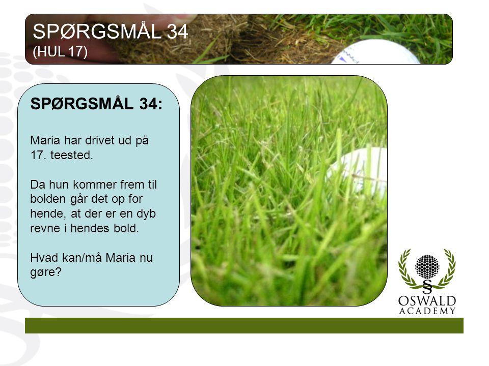 SPØRGSMÅL 34 SPØRGSMÅL 34: (HUL 17)