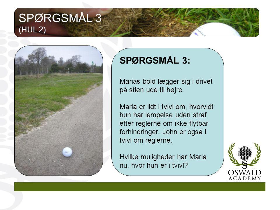 SPØRGSMÅL 3 SPØRGSMÅL 3: (HUL 2)