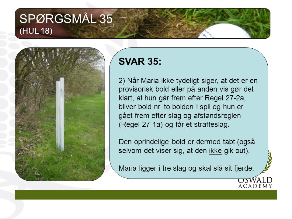SPØRGSMÅL 35 (HUL 18) SVAR 35:
