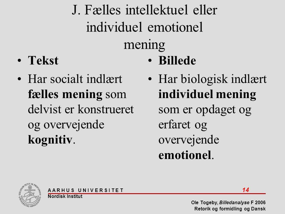 J. Fælles intellektuel eller individuel emotionel mening