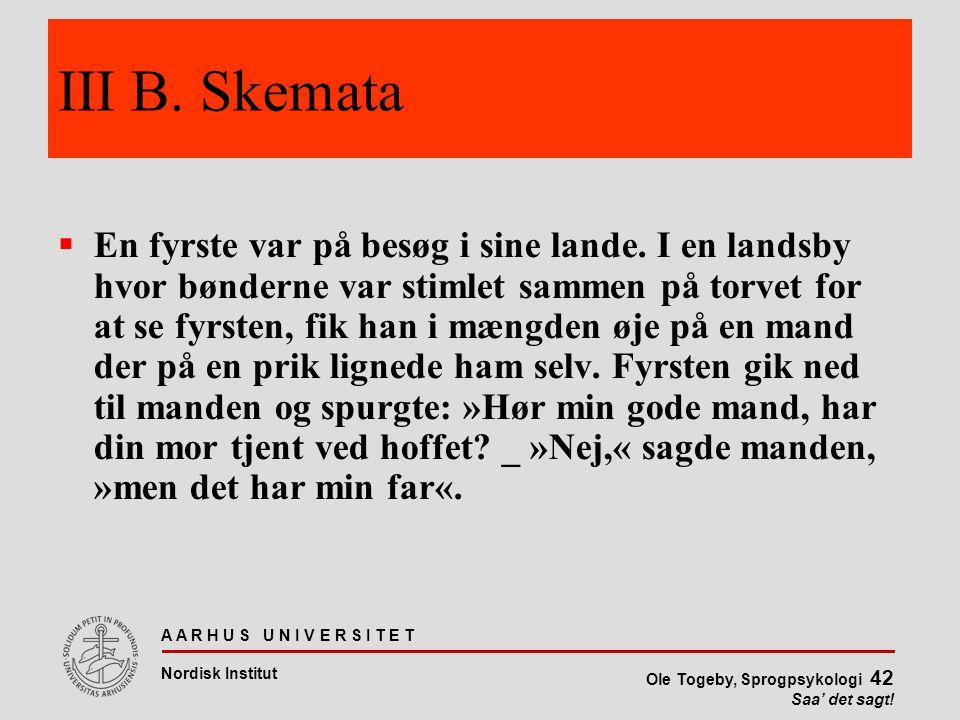 III B. Skemata