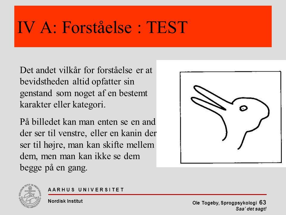 IV A: Forståelse : TEST
