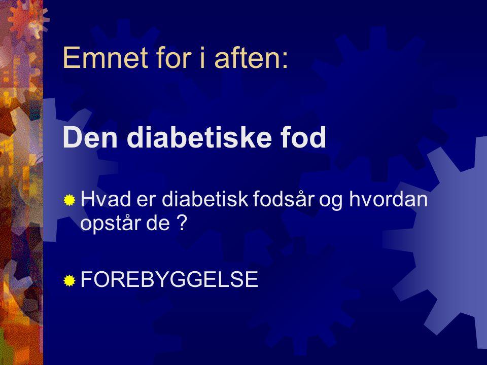 Emnet for i aften: Den diabetiske fod