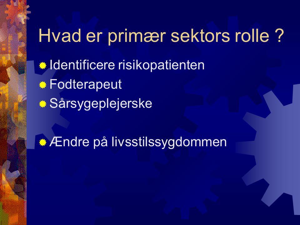 Hvad er primær sektors rolle
