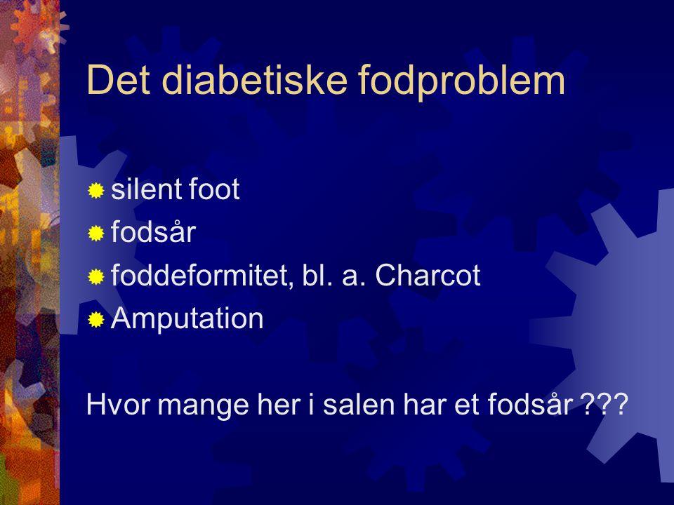 Det diabetiske fodproblem