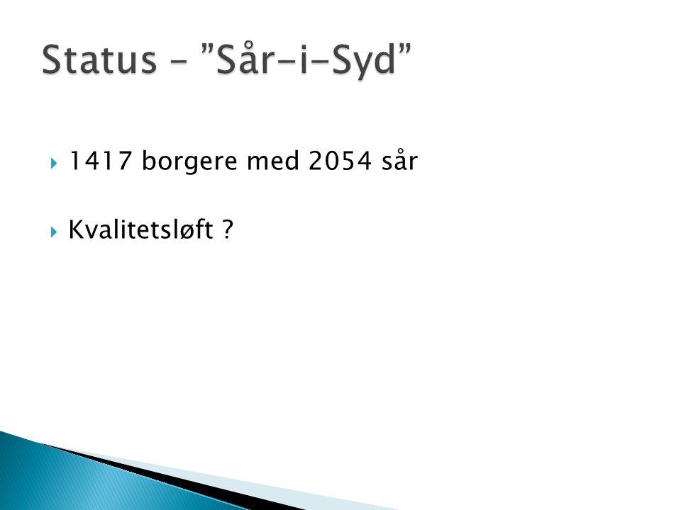 Status – Sår-i-Syd 1417 borgere med 2054 sår Kvalitetsløft
