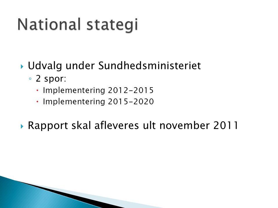 National stategi Udvalg under Sundhedsministeriet