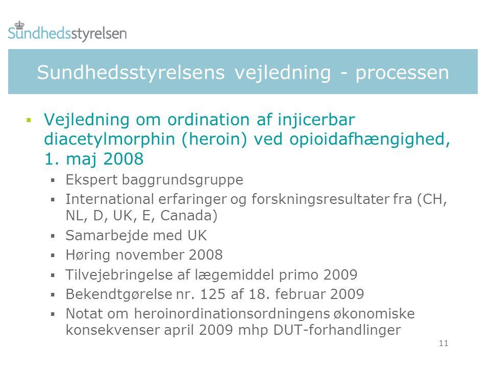Sundhedsstyrelsens vejledning - processen