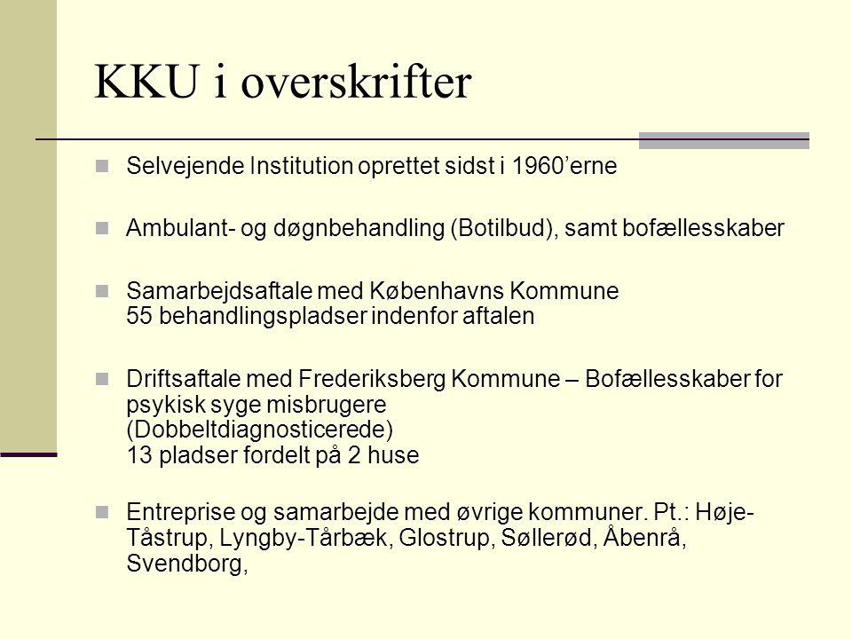 KKU i overskrifter Selvejende Institution oprettet sidst i 1960'erne