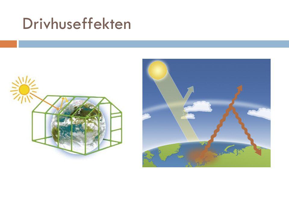 Drivhuseffekten Forskel på Ozonlag og drivhuseffekt…