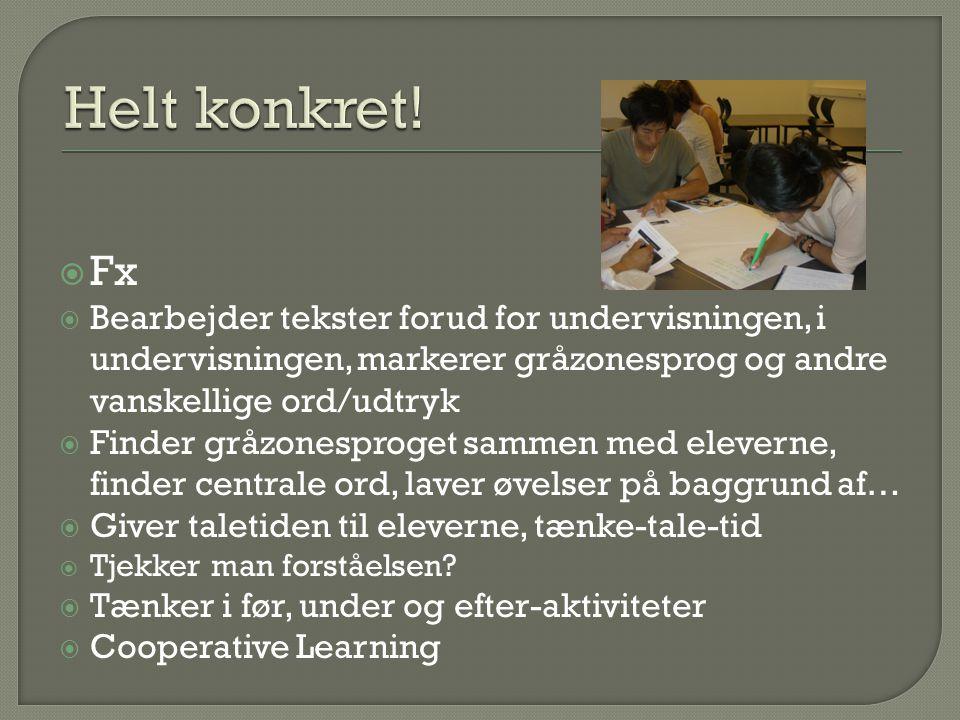 Helt konkret! Fx. Bearbejder tekster forud for undervisningen, i undervisningen, markerer gråzonesprog og andre vanskellige ord/udtryk.