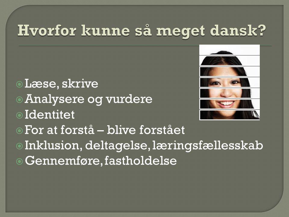 Hvorfor kunne så meget dansk