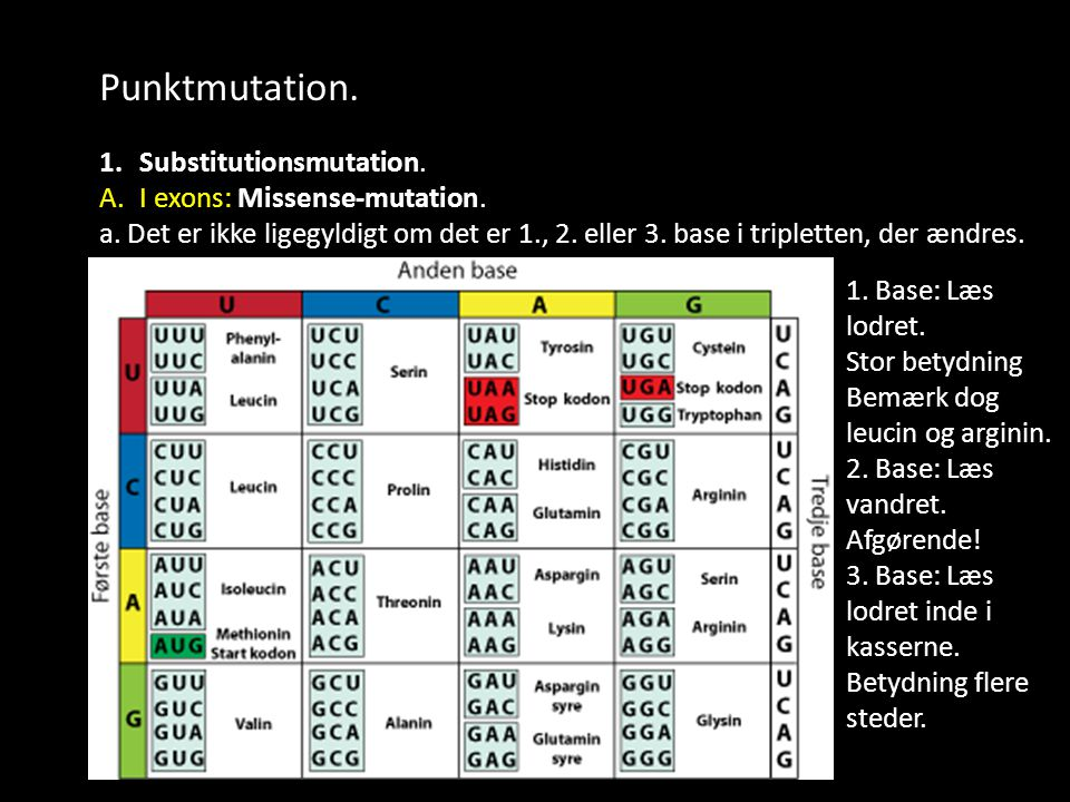 Punktmutation. Substitutionsmutation. I exons: Missense-mutation.