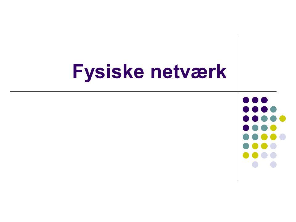 Fysiske netværk