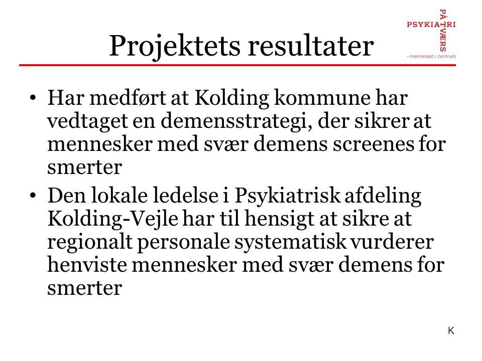 Projektets resultater