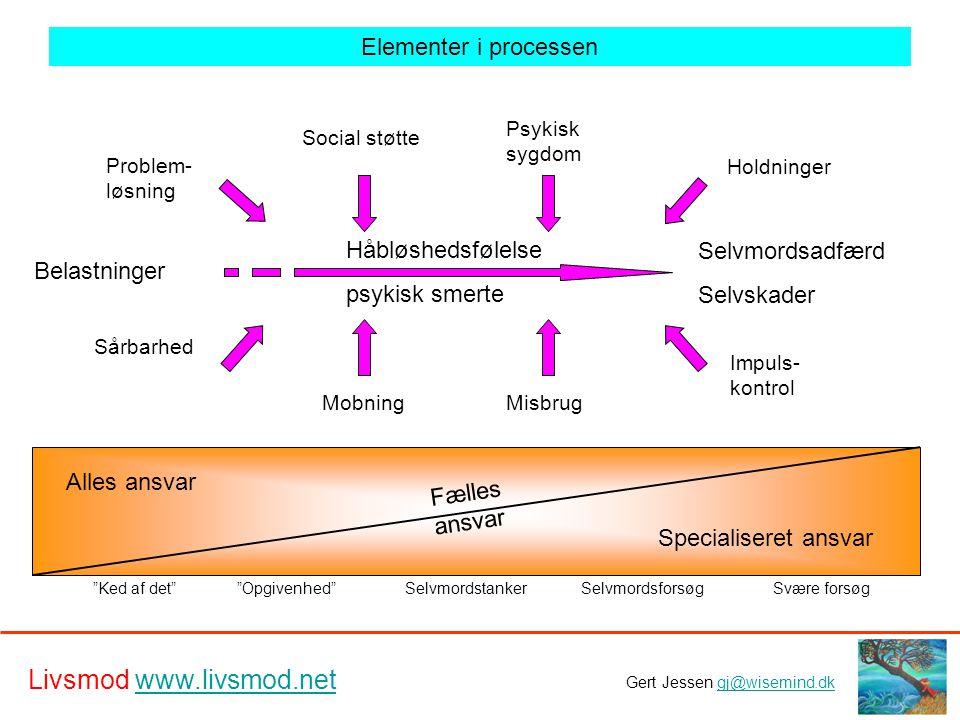 Elementer i processen Håbløshedsfølelse Selvmordsadfærd psykisk smerte