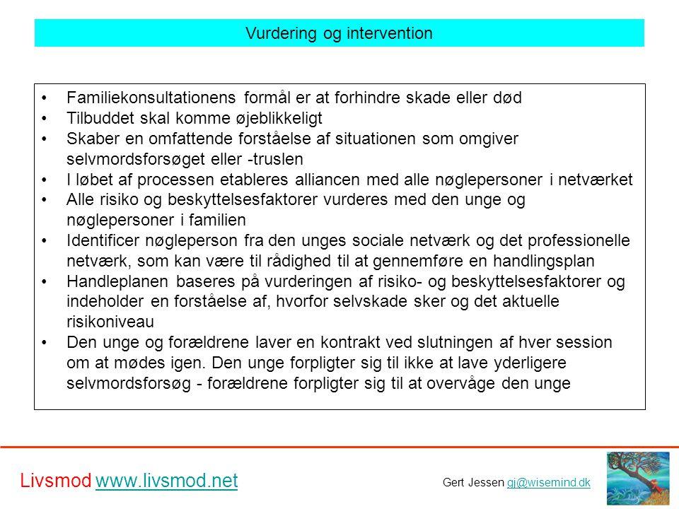 Vurdering og intervention