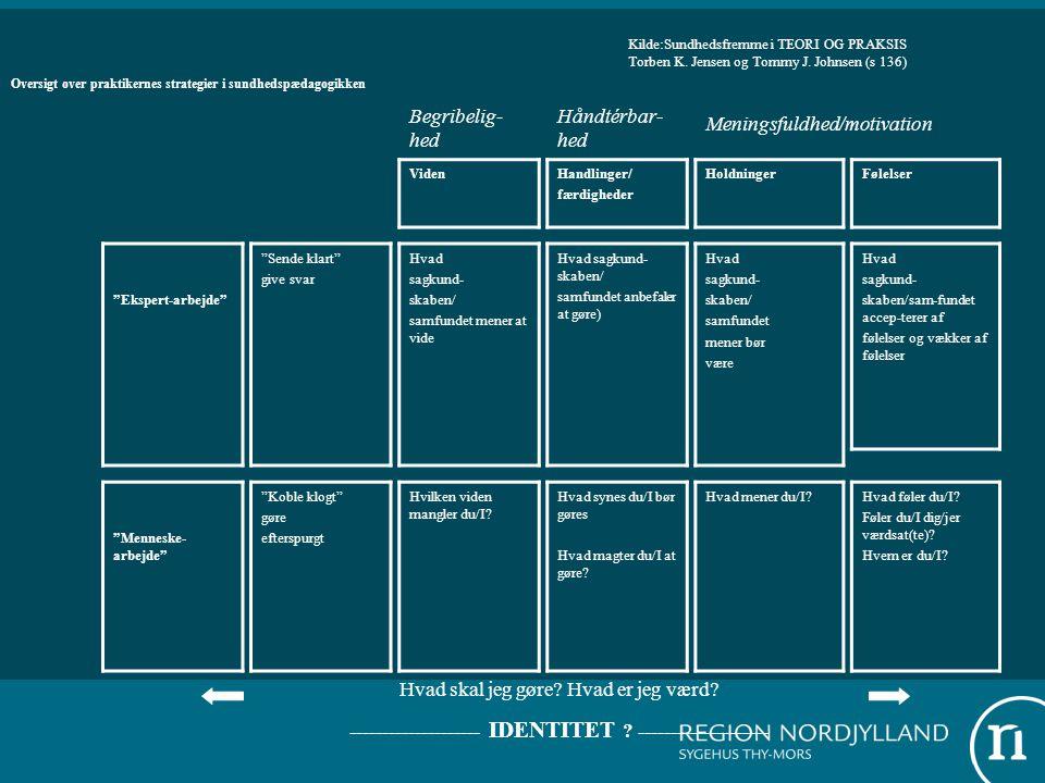 Oversigt over praktikernes strategier i sundhedspædagogikken