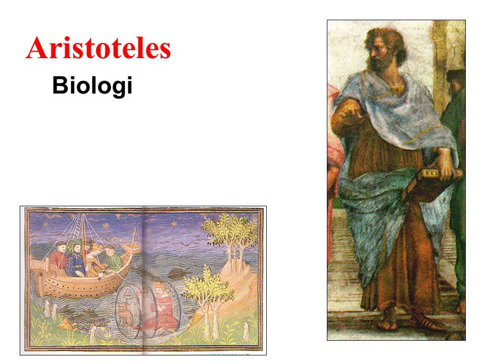 Aristoteles Biologi