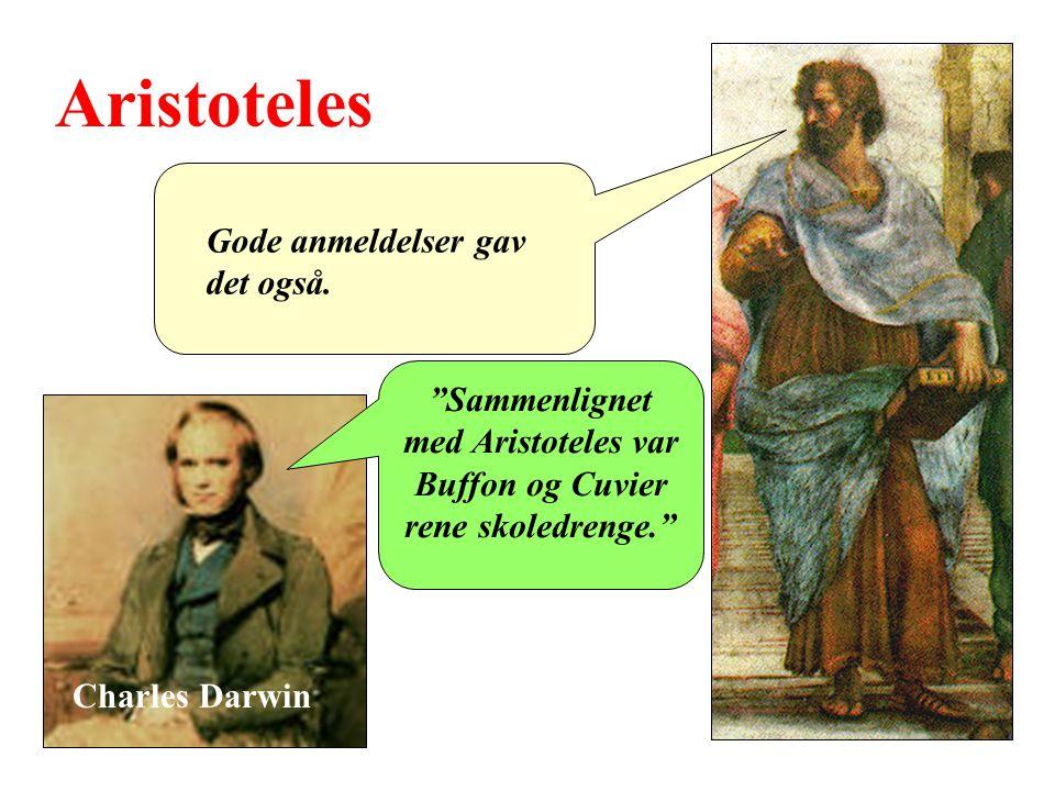 Sammenlignet med Aristoteles var Buffon og Cuvier rene skoledrenge.