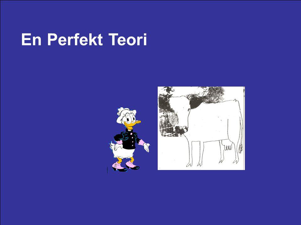 En Perfekt Teori